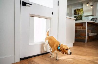 MyQ Pet Portal System