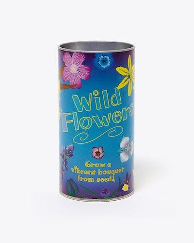 Wildflower Mix Seed Grow Kit