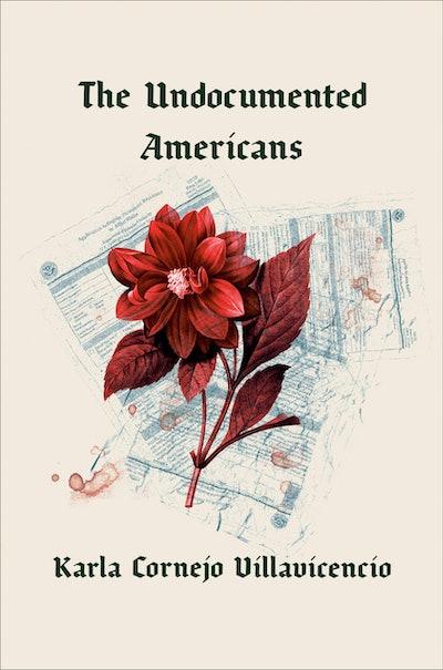 'The Undocumented Americans' by Karla Cornejo Villavicencio