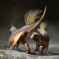 Cloacal study gives a 'rare glimpse' into the sex lives of dinosaurs