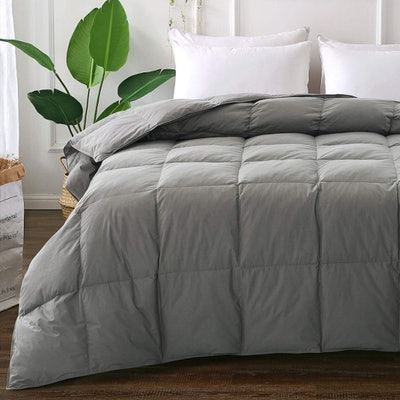 Elnido Queen Down Comforter
