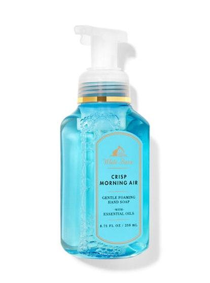 White Barn Crisp Morning Air Gentle Foaming Hand Soap