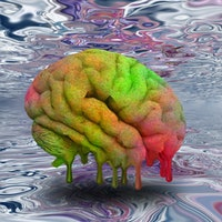 LSD and the brain: Why the psychedelic changes social behavior