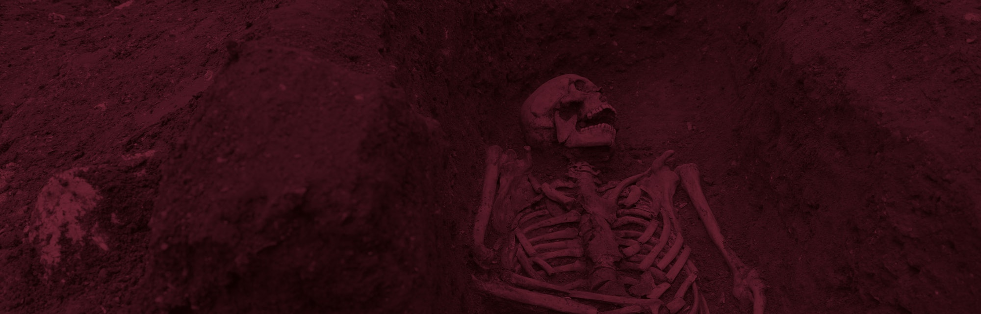 cambridge skeleton from medieval england