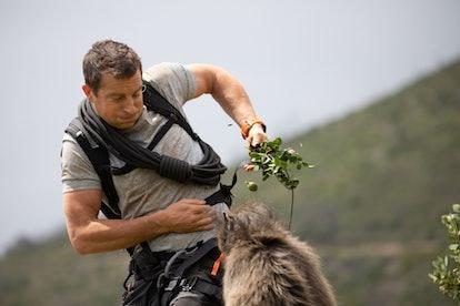 Bear Grylls starts in a new Netflix original film streaming on Feb. 16.