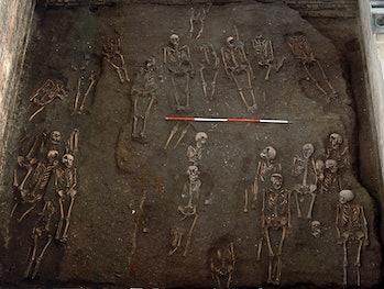 hospital remains cambridge skeletons