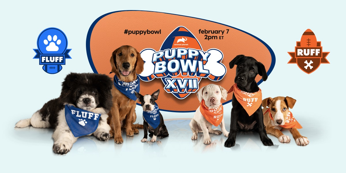 Sonic is offering a free drinks deal in honor of the 2021 Puppy Bowl.