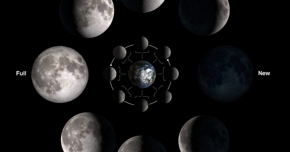 You need to see the Wolf Moon shine in the sky this week - Inverse