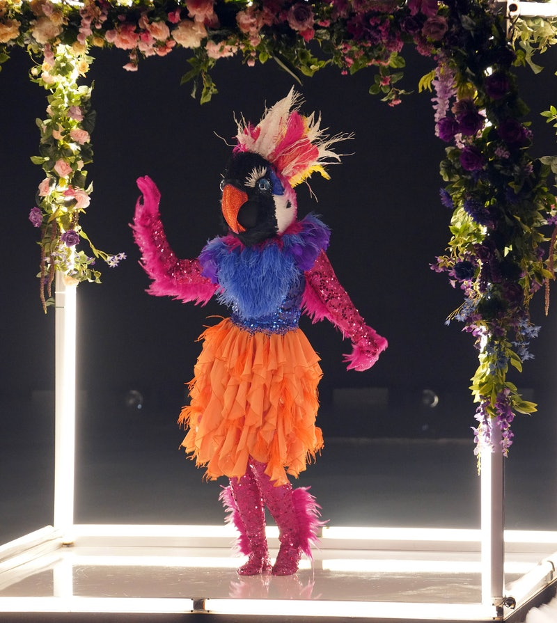 Exotic Bird on 'The Masked Dancer,' via FOX press site.