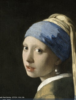 """Johannes Vermeer's famous """"Girl with a Pearl Earring"""" painting"""