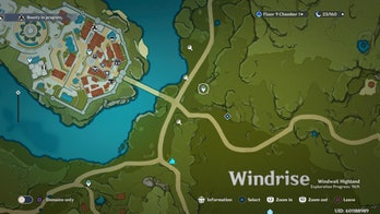 Genshin Impact Berry Map Marvelous Merch Liben 2021 Mondstadt