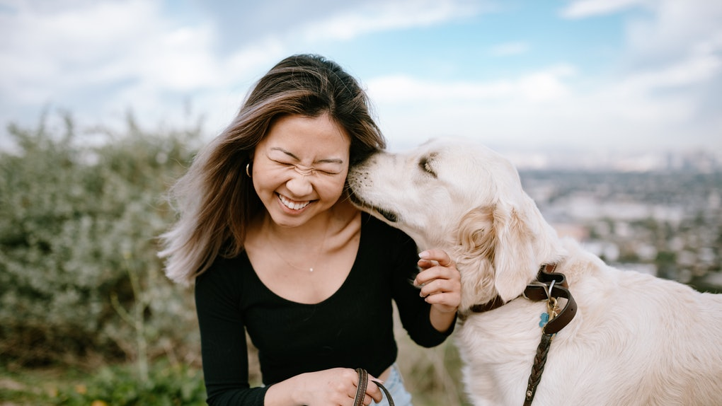 Dog licking female owner's face
