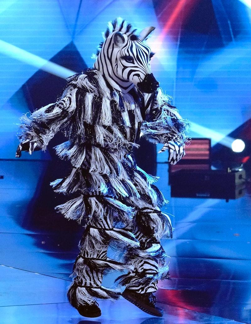 Zebra on 'The Masked Dancer' Season 1 via FoxFlash press site