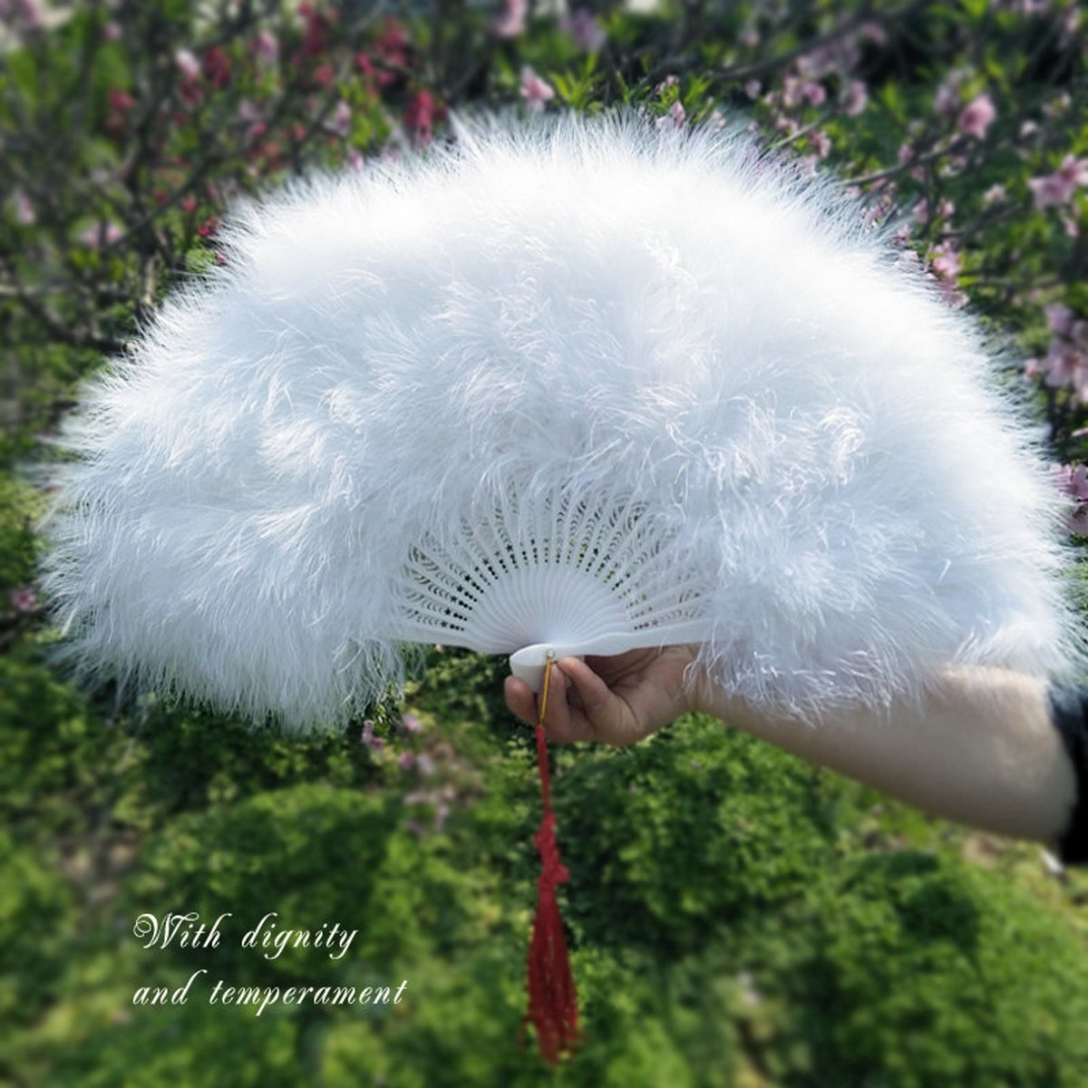 Feather Hand Fans