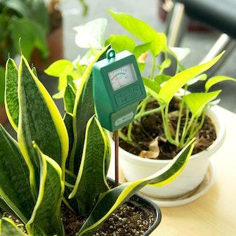 Dr. Meter Hygrometer Moisture Sensors (2-Pack)