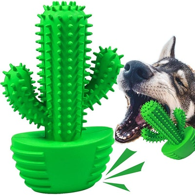 Pamlulu Dog Teeth Cleaning Cactus