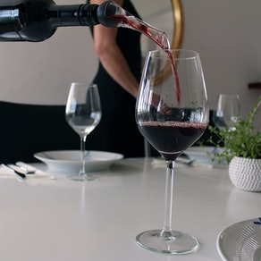 Barvivo Wine Aerator and Bottle Stoppers
