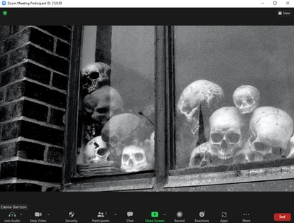 This scary Zoom background for Halloween features a stack of human skulls in a window.