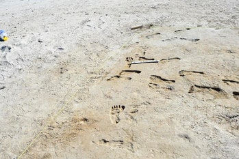 On the left, modern shoeprints; on the right, footprints millennia old.