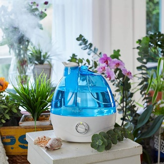 AquaOasis Cool Mist Humidifier for Bedrooms & Large Rooms