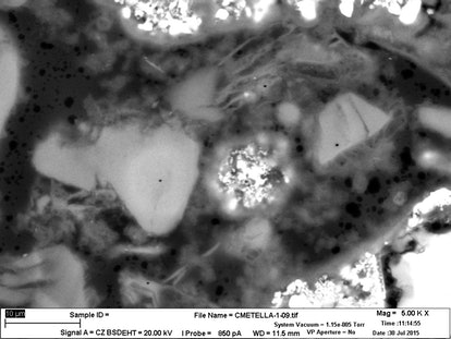 Scanning electron microscope image of the tomb mortar. The intact and wispy C-A-S-H  features appear...