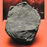 Look: Stardust embedded in ancient meteorite tells the origin story of the Sun