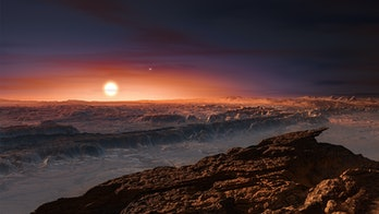 An illustration of the exoplanet Proxima b showing its rocky surface with its host star rising in th...