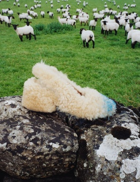 A Marni shoe made from faux shearling in front of a flock of sheep