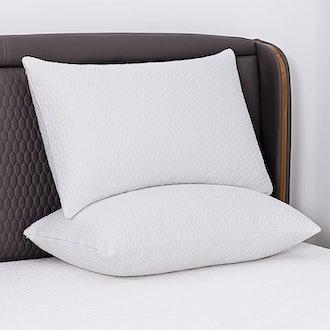 Iyee Nature Standard-Size Memory Foam Pillows (2-Pack)