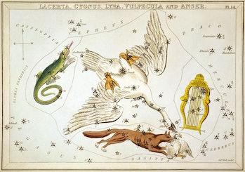 Constellation Lyra astrological map