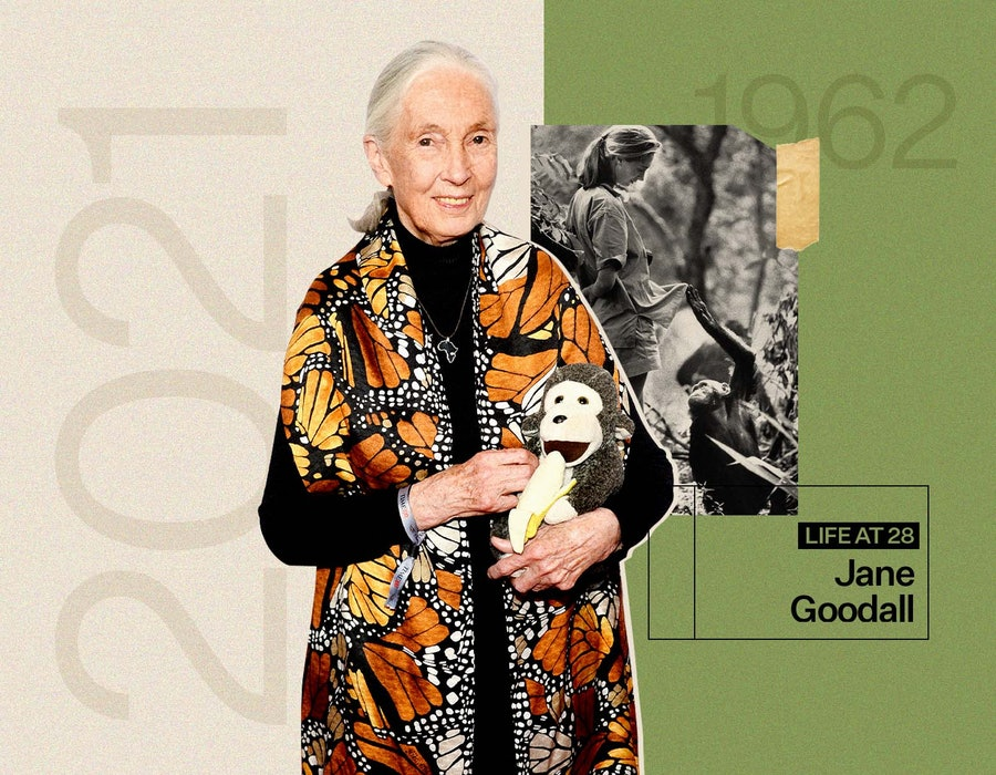 Since Jane Goodall was young, she cared for the natural environment.