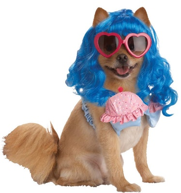 This Katy Perry dog costume is part of the Halloween Express 2021 pet costumes for this year.
