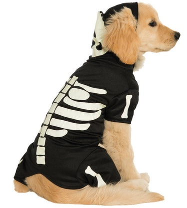 This skeleton costume looks like a Phoebe Bridgers onesie and is part of Halloween Express' 2021 pet...