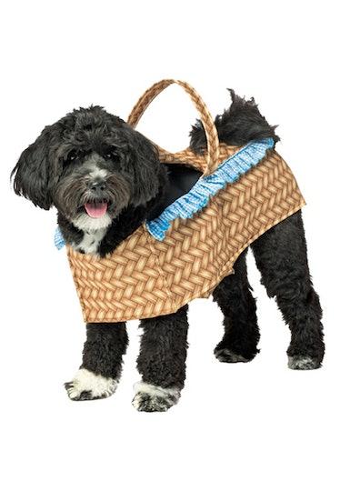 Dog Basket Pet Costume
