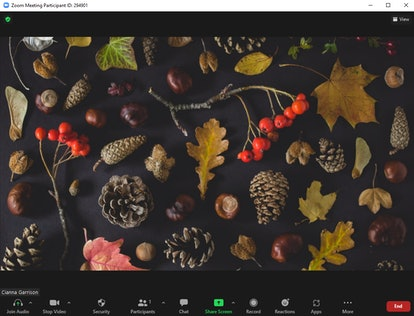 These fall Zoom backgrounds include pinecones and fallen leaves.