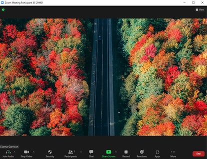 These fall Zoom backgrounds include a pretty autumn drive.