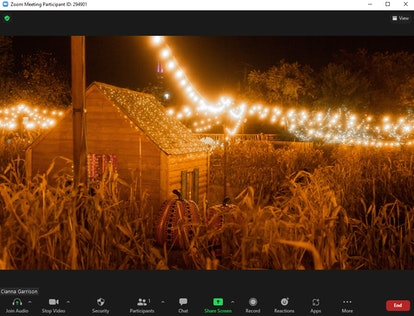 These fall Zoom backgrounds include a corn maze in the country.