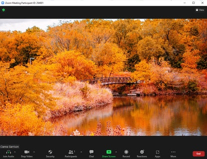 These fall Zoom backgrounds include pretty fall foliage in the country.