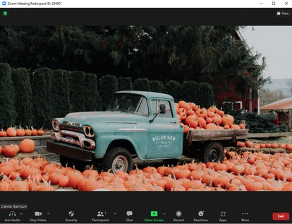 These fall Zoom backgrounds include the cutest pumpkin patch.