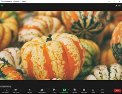 These fall Zoom backgrounds include orange and green pumpkins.