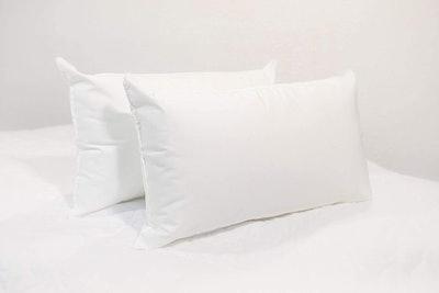 IZO Home Goods Throw Pillow Insert (Set of 2)