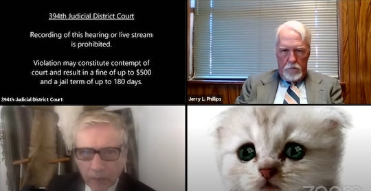 One Texas lawyer made people laugh in a now viral video where he used a kitten filter during an important Zoom Meeting.