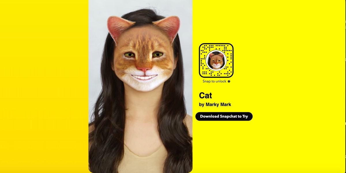 This Snapchat filter turns your face into a cat.