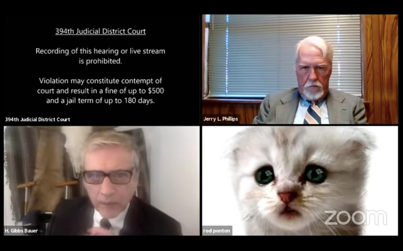 A screenshot of the virtual court proceedings where a Texas lawyer accidentally logged in with a cat...