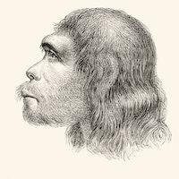 Neanderthal brain organoids reveal what makes us human