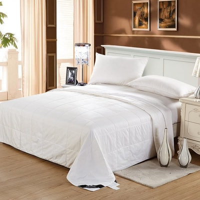 LilySilk 100% Silk Duvet/Comforter