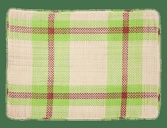 Light Green Handwoven Placemats, Set of 6