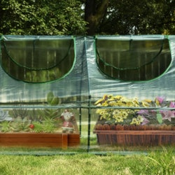 best small greenhouses on amazon