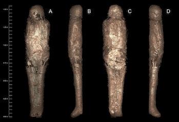 mud covered mummy egypt