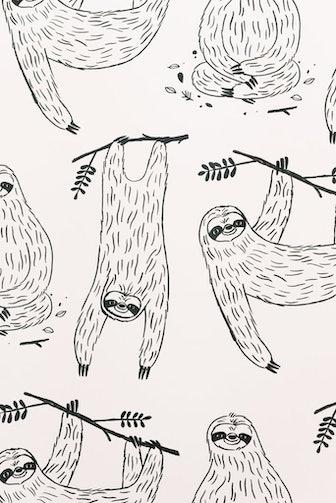 Mr. Sloth Wallpaper